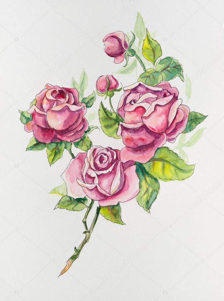 Brunch Di Rose Modello Da Rose Disegni Di Nozze Foto Stock