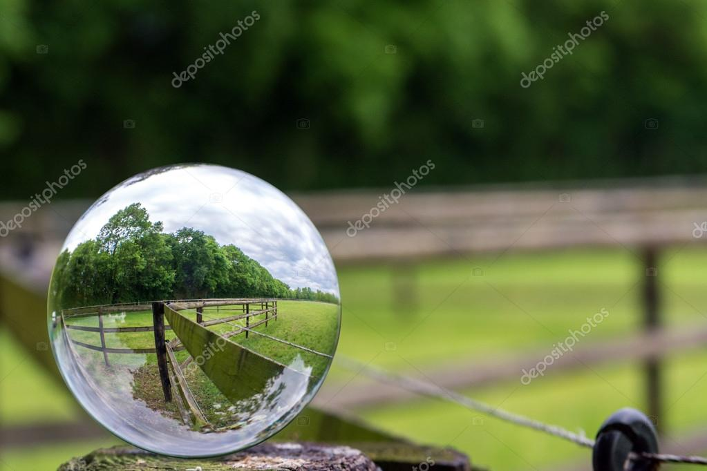 A paddock photographed with a glass ball