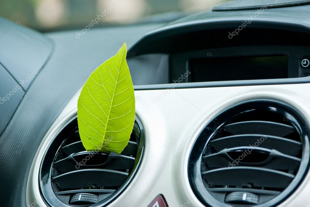 Fresh car