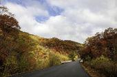 autunno Monte changbai