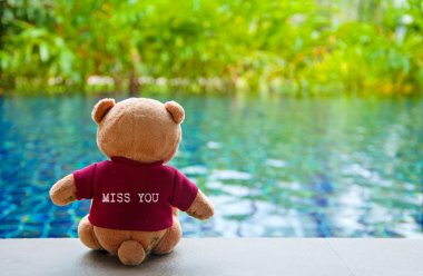 Back view of teddy bear wearing red T-Shirt with text