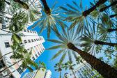 Photo Miami Beach