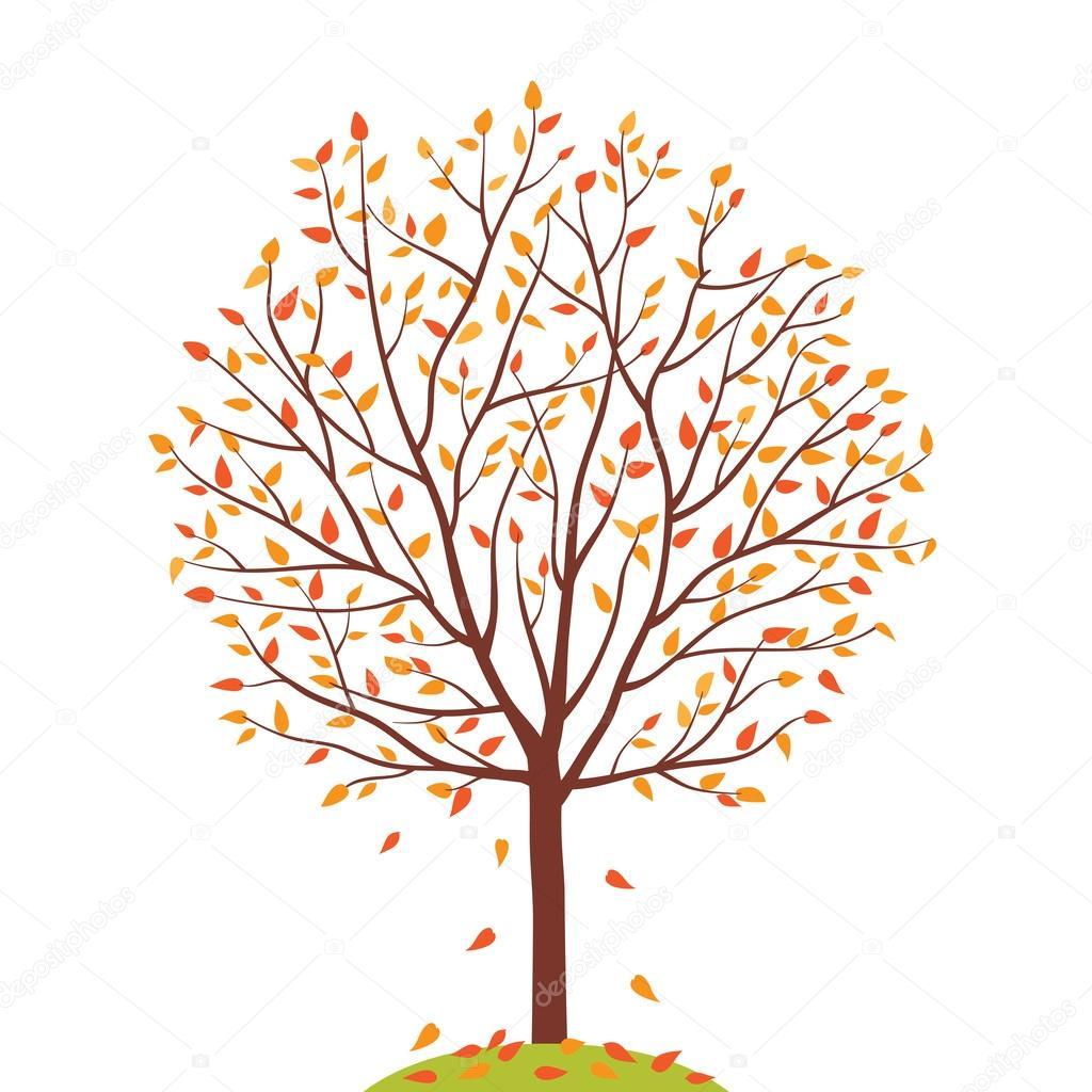 Sonbahar Ağacı Vektör çizim Stok Vektör Tkoko 46638049