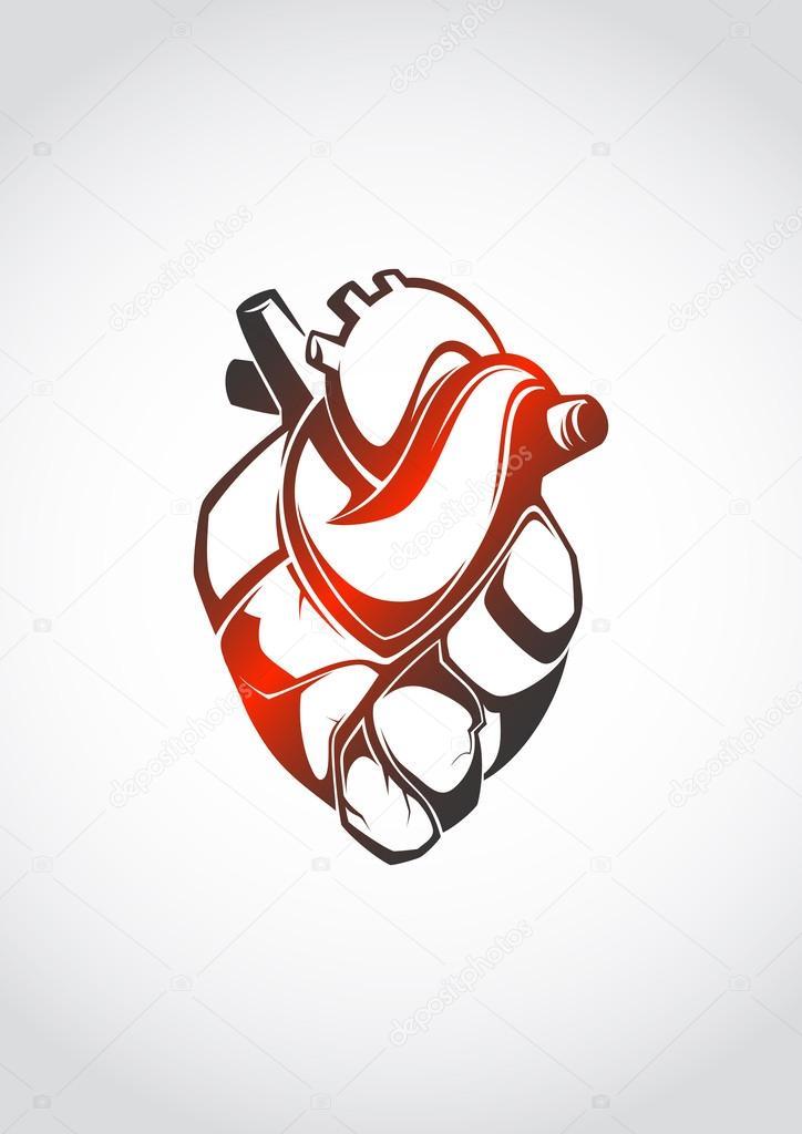 abstrakte anatomisches Herz — Stockvektor © Pevunova #43200933