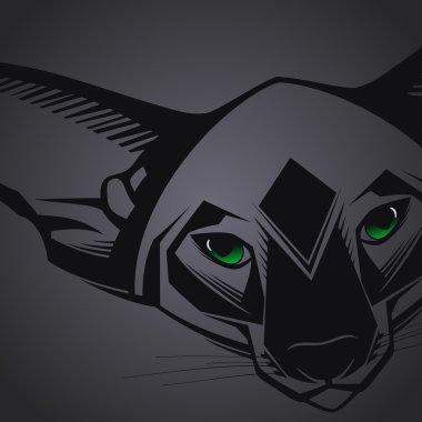 Close-up portrait of Oriental cat on black background. Vector illustration