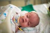 Fotografie Baby auf Intensivstation