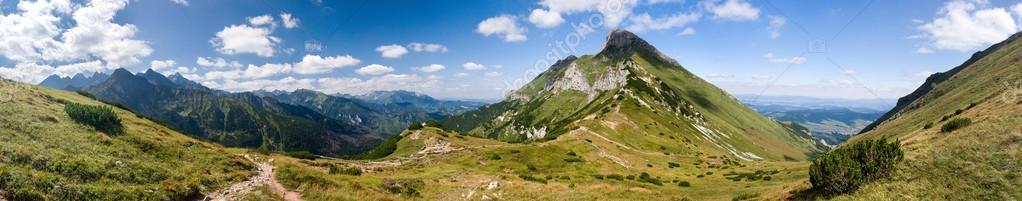 Panorama of summer mountain ridge
