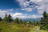 úžasné letní horské krajiny s modrou oblohou