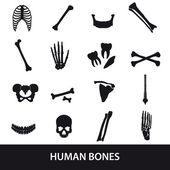 human bones set of icons eps10