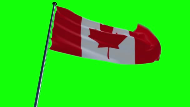 Canada Flag, animated on different backgrounds with greenscreen and alpha