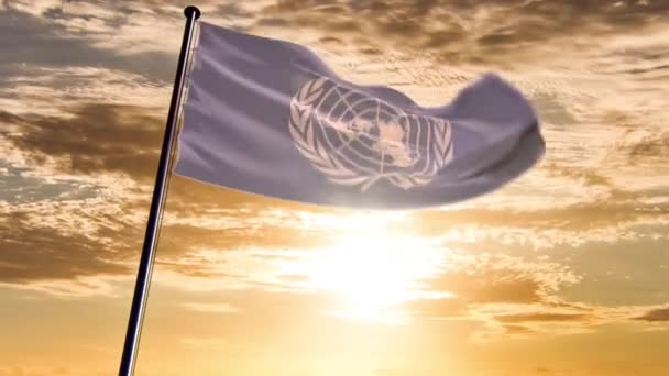 UN Flag, animated on different backgrounds