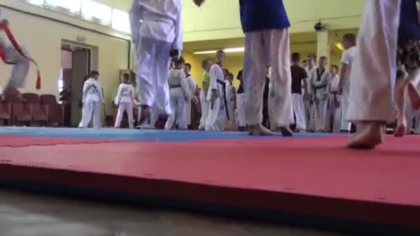 Coach corrects Ammunition before fight sport