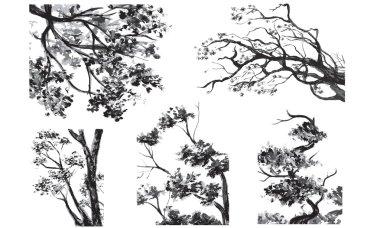 TREES - Drawn Watercolor