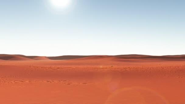 oáza v poušti střední