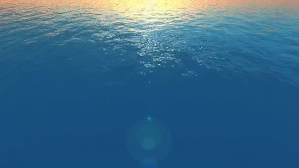 létání v západu slunce oceánu