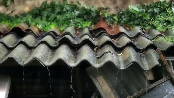 Rain in roof slow motion