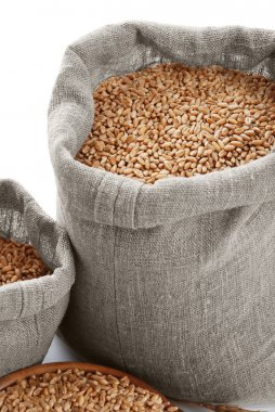 Grain of the wheat in bags and a bowl