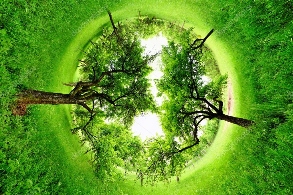 Stereographic projection of a green field with trees