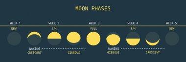 Moon Phases at Equator