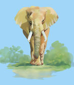Watercolor elephant on blue background