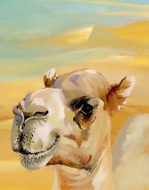 Watercolor camel in desert stock vector