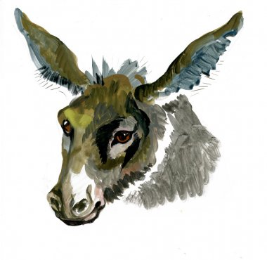 Watercolor donkey