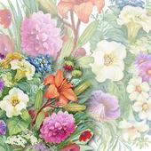 Akvarel květiny