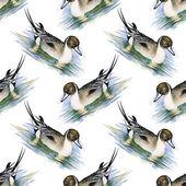 Photo Seamless pattern with Wild ducks