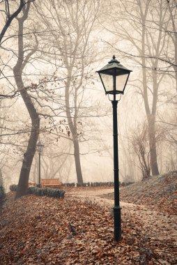 Street lamp in misty autumn forest park