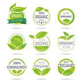 ökológia, szerves ikon készlet. Eco-ikonok
