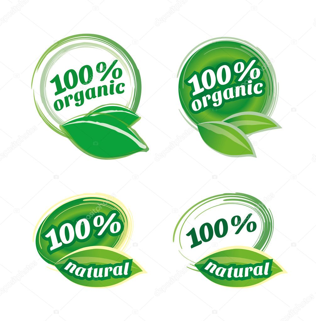 Natural & organic leaf icon vector