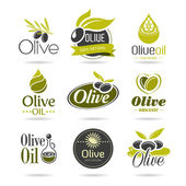 Photo Olive oil icon set