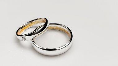 Pair of lovers wedding rings