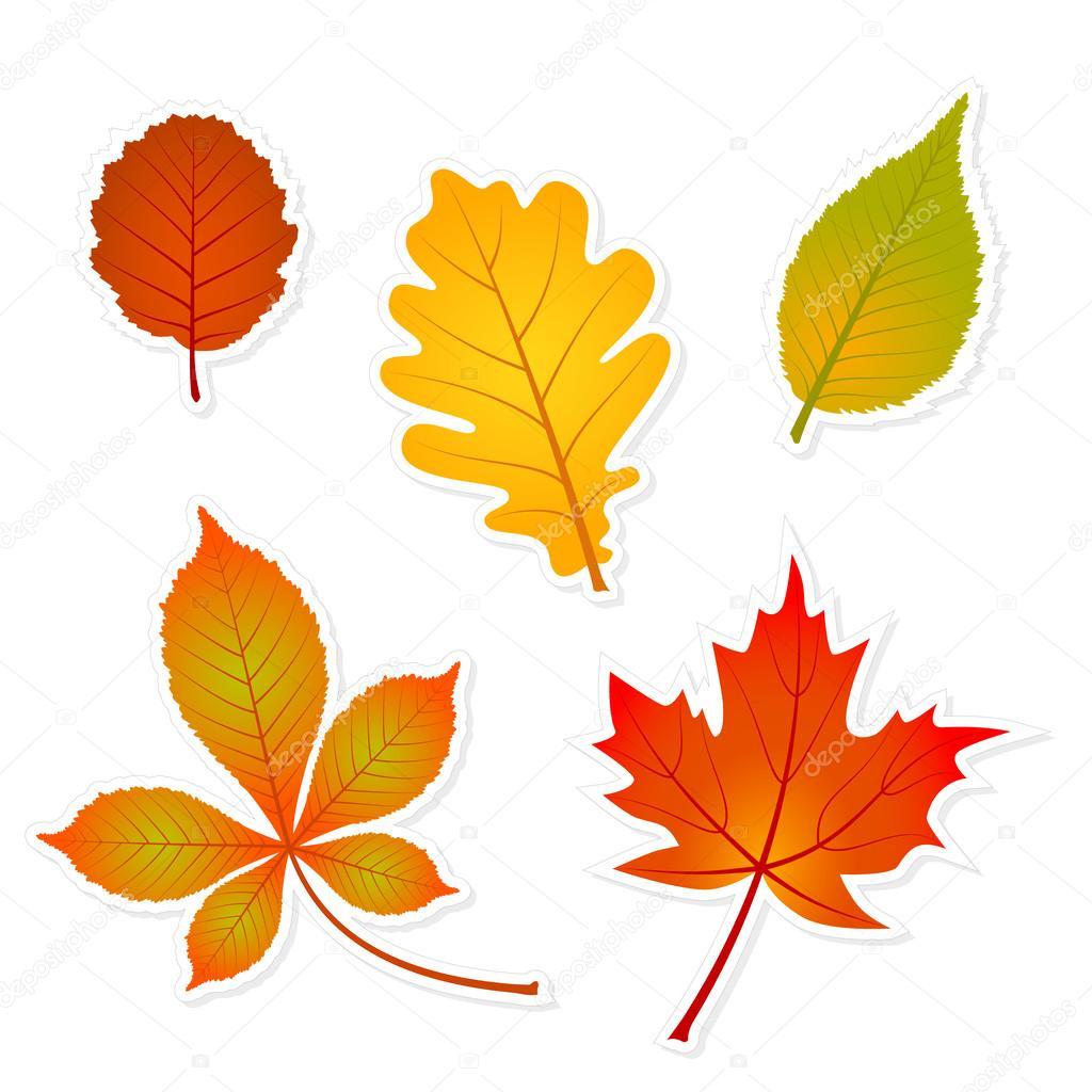 Осенние листья   началочка.