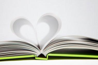 Book Heart stock vector