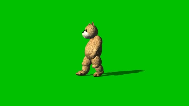 Cartoon bear goes backwards  - green screen