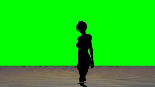 Woman on the beach - silhouette - green screen