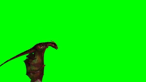 Sárkány repülés közben - zöld képernyő