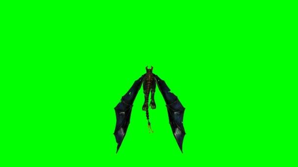 Drak za letu - zelená obrazovka