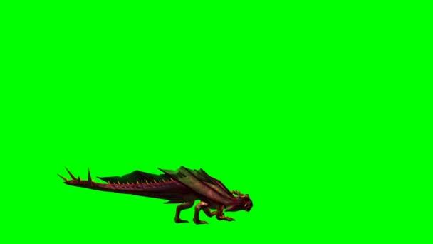 Dragon animace - zelená obrazovka