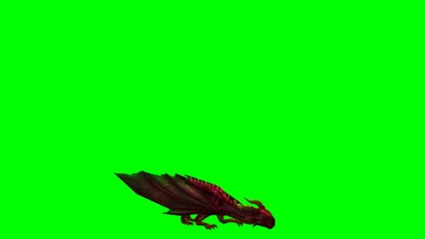 Schermata di animazione - verde drago