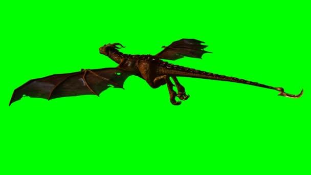 Dragon wyvern v plachtě - zelená obrazovka