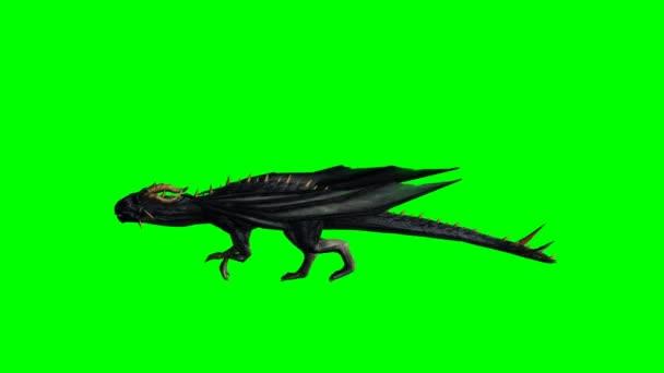 Sárkány fut - zöld képernyő