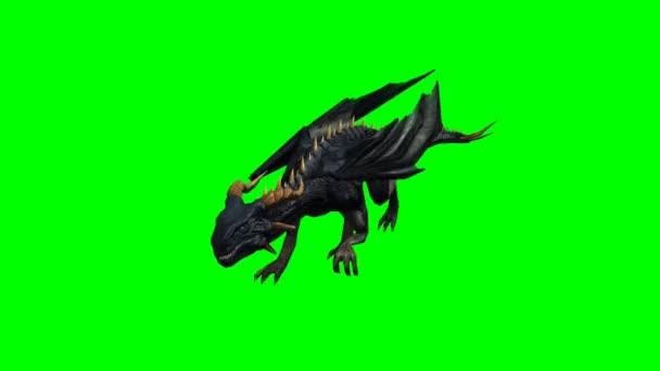 Dragon běží - zelená obrazovka
