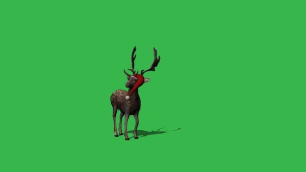 Christmas rendeer animation - green screen