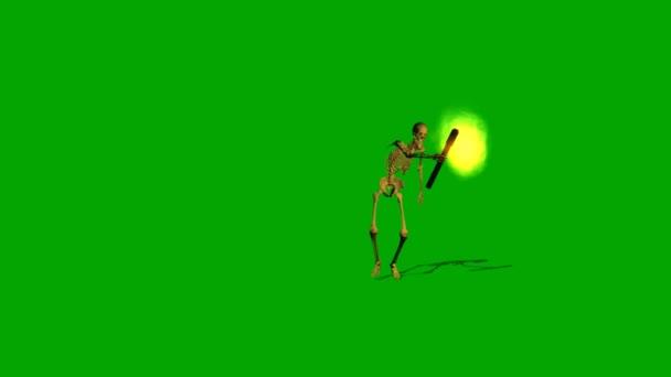 Kostra plíží se pochodeň přes noc - zelená obrazovka