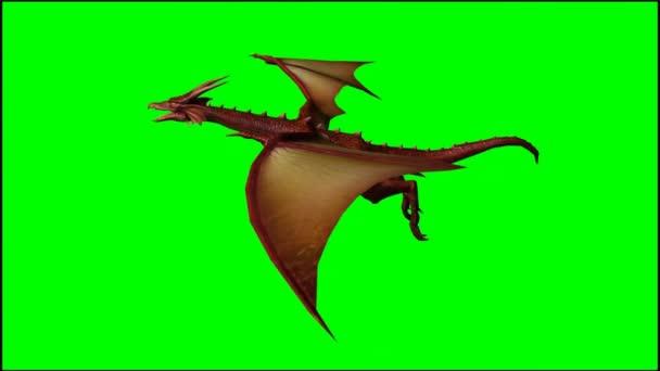 Drak v sestupové letu - zelená obrazovka