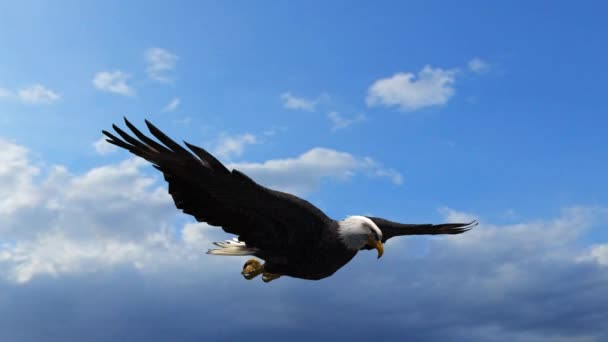 Bald Eagle in Flight Close-Up