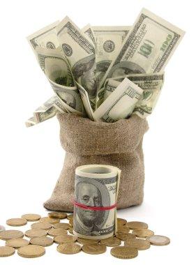 Canvas money sack