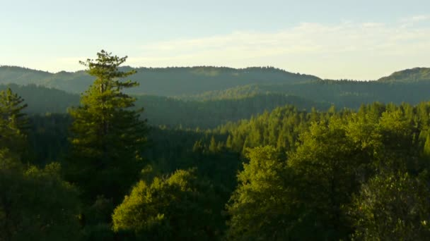 východ slunce v červené woods